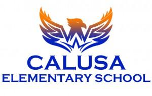 Calusa3