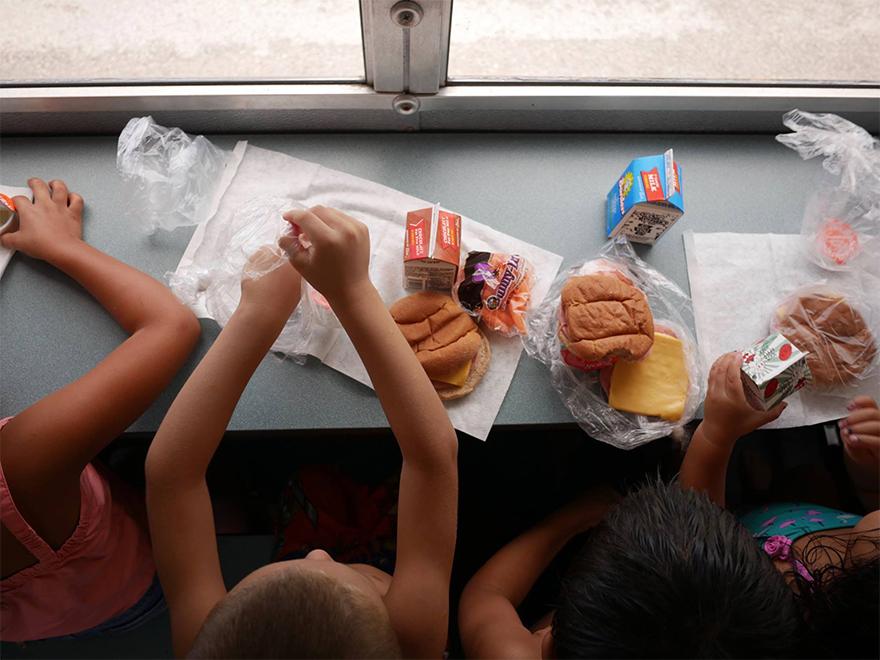 Drive through Feeding Sites